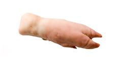 Pie del cerdo.   Fotografía de archivo