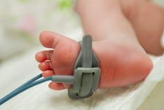 Pie del enfermo recién nacido del bebé en cámara de la incubadora Imagenes de archivo