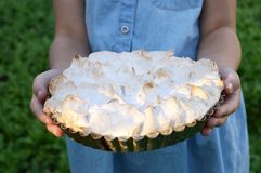 Lemon cake with a cap of meringue stock photography