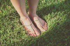 Pie en hierba Imagen de archivo