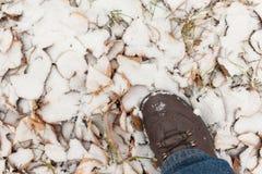 Pie en la nieve Imagenes de archivo