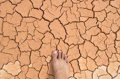 Pie en suelo seco Imagenes de archivo