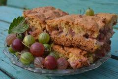 Pie gooseberry Stock Photography