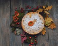 Pie on leaves Royalty Free Stock Photos