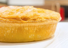 Pie on a plate. Freshly baked chicken pie on a white plate stock image