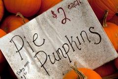 Pie pumpkins for sale Stock Images
