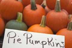 Pie Pumpkins. Sign with pumpkins in background Royalty Free Stock Photos