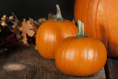 Pie Pumpkins Stock Photo