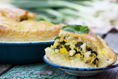 Pie with spinach Stock Images