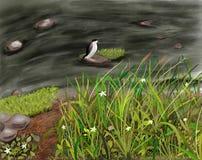 Pie sur la rivière illustration libre de droits