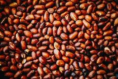 Piec arachidy w smaży niecce Obraz Stock