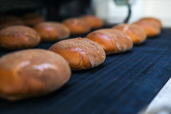 Piec chleby na linii produkcyjnej przy piekarnią Obrazy Stock