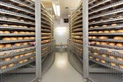 Piec chleby na produkci zdjęcie royalty free