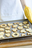 piec ciastka świeżo Fotografia Stock