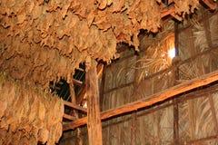 piec do suszenia liści tytoniu Obraz Stock