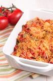Piec drobiowy mięso z serowymi pomidorami i warzywami zdjęcie royalty free
