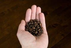 piec fasoli kawa zdjęcie royalty free