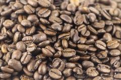 piec fasoli kawa Kawa espresso zmrok, aromat, czarny kofeina napój Przedpole w ostrości, plecy no jest ostrości fotografia royalty free