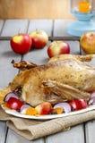 Piec gąska z jabłkami i warzywami Obrazy Stock