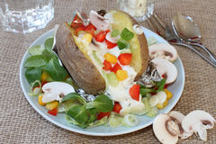 Piec grula z warzywami Obraz Stock