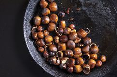 Piec hazelnuts w starej niecce fotografia royalty free