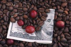 Piec i surowe czerwone kawowe fasole na sto dolarowych rachunkach Obrazy Royalty Free