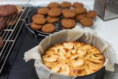Piec jabłczany kulebiak w foremce Fotografia Stock