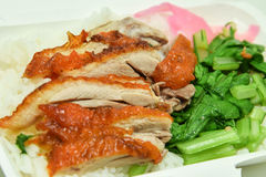 Piec kaczka na ryż zdjęcie royalty free