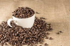 Piec kawowa fasola w białej filiżance Obrazy Stock