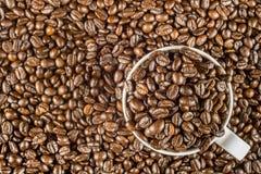 Piec kawowa fasola w białej filiżance Fotografia Stock
