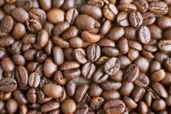 Piec kawowe fasole na nieociosanym drewnianym tle Karmowi składniki, odgórny widok, przestrzeń dla teksta fotografia stock