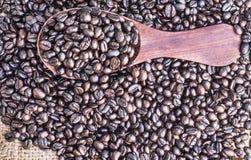 Piec kawowe fasole w drewnianej łyżce Fotografia Royalty Free