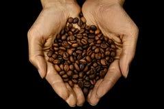Piec kawowe fasole w kobiet złotych rękach Fotografia Stock