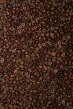Piec Kawowe fasole Wypełnia całość ramy zdjęcie royalty free