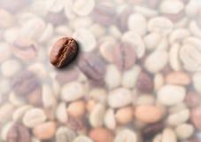 Piec kawowych fasoli zakończenie Obraz Royalty Free