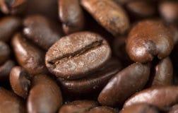 Piec kawowych fasoli zakończenie Obrazy Royalty Free