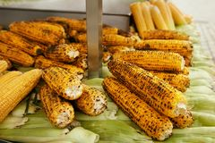 Piec kukurudza Przy Wschodnim Ulicznym jedzenie rynku zbliżeniem fotografia royalty free