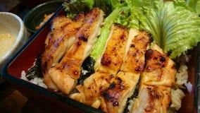 piec kurczaków ryż Obrazy Stock