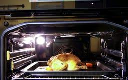 Piec kurczak Zdjęcie Royalty Free