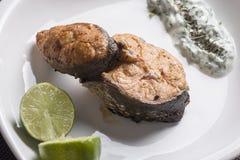 Piec na grillu łososiowa sałatka i cytryna Zdjęcie Stock