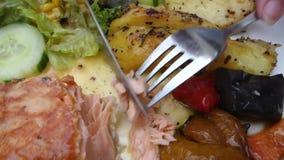 piec na grillu łososiowi warzywa zbiory wideo