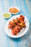 Piec na grillu chałupa ser lub także znać jako Paneer Tikka Kebab, chili chili, paneer lub lub, bar paneer lub tandoori paneer w  Zdjęcie Royalty Free