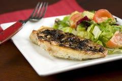 Piec na grillu Czerwony Snapper Zdjęcie Royalty Free