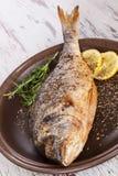 Piec na grillu ryba. Obrazy Royalty Free
