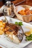 Piec na grillu dorado ryba Zdjęcie Royalty Free