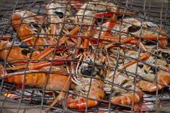 Piec na grillu Garnela Zdjęcie Royalty Free