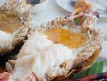 Piec na grillu Gigantyczna Rzeczna krewetka, jedzenie w Tajlandia fotografia royalty free