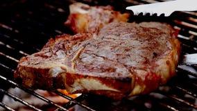 Piec na grillu: Kość stek na węgla drzewnego ogieniu zbiory wideo