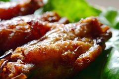 Piec na grillu korzenni kurczaków skrzydła Fotografia Royalty Free