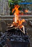 Piec na grillu kurczak na ciep?ej wio?nie fotografia royalty free